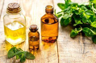 Twój pierwszy olejek do włosów – jaki wybrać?